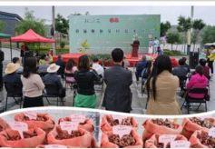 甘肃省榆中县隆重举办首届陇原艾民俗文化节