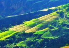 甘肃庆阳的这个县 拥有南梁红色景区