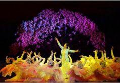 音乐剧《达玛花开》入选第二届全国优秀音乐剧展演参演剧目名单