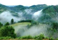 华池县文旅资源丰富 主要分为红色、生态、人文三大类