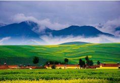 """甘南:美丽风景与生态经济""""比翼齐飞"""""""