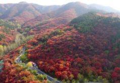 甘肃省临夏州市民9月1日起可免门票游济南市国有A级旅游景区
