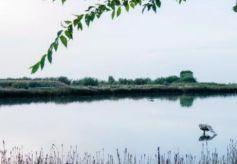 甘肃沙漠中有一片绿洲被称为塞上江南还是养老城市