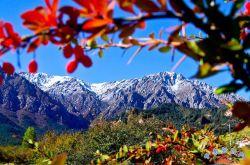 肃南:祁连山秋色美