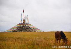 甘肃肃南竟有268万亩草原以九排松而闻名 还能看到牧民盛会