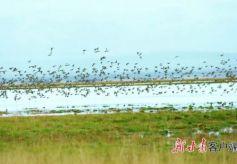"""2021甘肃省文化旅游商品大赛 这些文创产品很""""亮眼"""""""