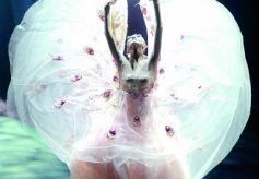 中国舞蹈艺术发展之路在何方?